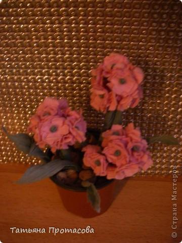 Гладиолусы и роза фото 2