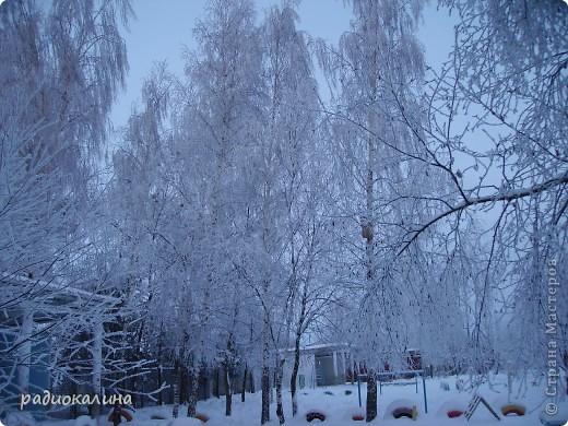 Утром мы с внучкой пошли в садик и опоздали - любовались на красавицу-зиму, которая пришла ночью и украсила все кругом. Нежный рассвет и снег . фото 2