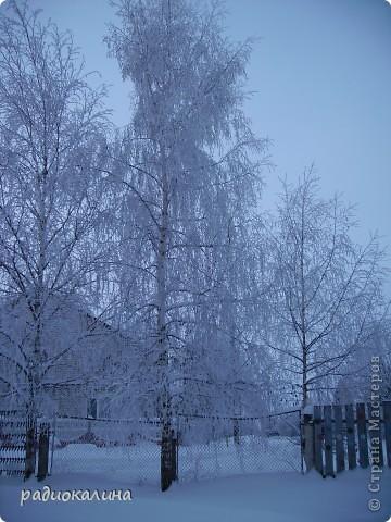 Утром мы с внучкой пошли в садик и опоздали - любовались на красавицу-зиму, которая пришла ночью и украсила все кругом. Нежный рассвет и снег . фото 7