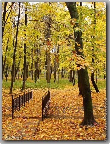 """""""Осенняя палитра..."""" фото 7"""