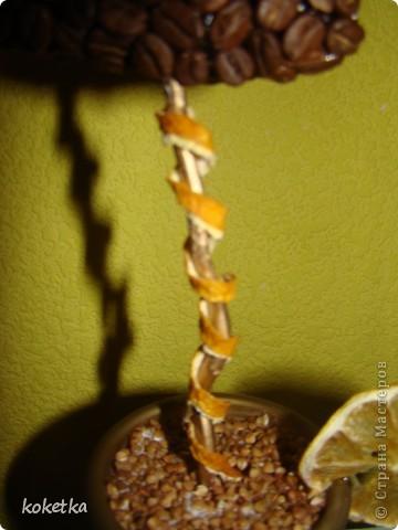 Мои первые две роботы с зернами кофе. Это дерево - сердце и сердце - магнит на холодильник.  фото 5