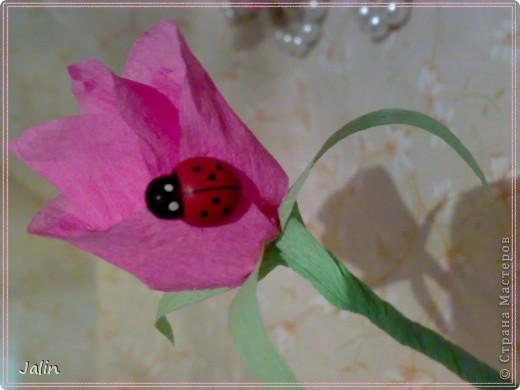"""Знакомьтесь, моя новая розовая зая ) На сей раз в технике амигуруми. Смастерила """"запоем"""" за 2 часа свободного вечера, сразу, как только увидела :) фото 8"""
