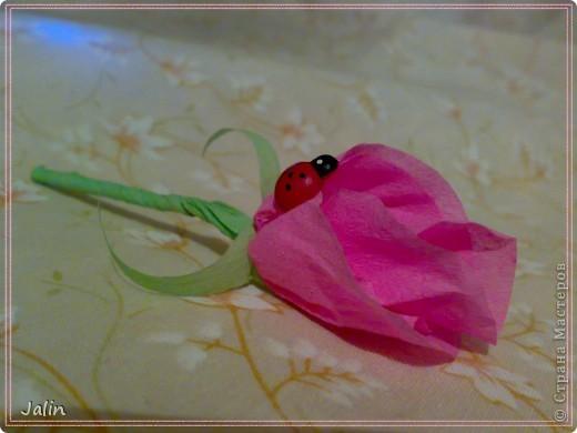 """Знакомьтесь, моя новая розовая зая ) На сей раз в технике амигуруми. Смастерила """"запоем"""" за 2 часа свободного вечера, сразу, как только увидела :) фото 9"""