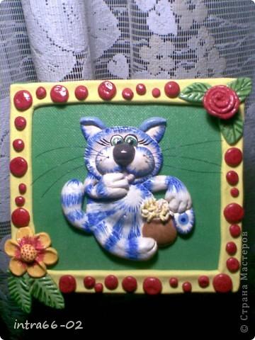 синий котик 1