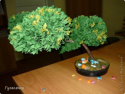 """Японское деревце бонсай выросло у нас на занятии кружка """"Волшебный квадрат"""" фото 3"""