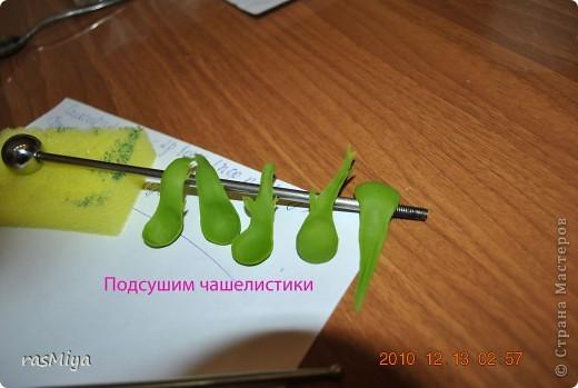Мастер-класс Лепка МК по лепке розы Часть 2-чашелистики Фарфор холодный фото 5