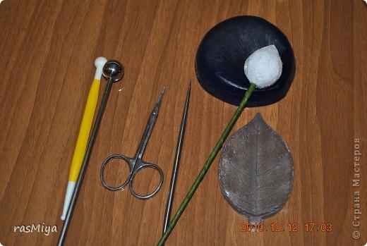 МК буду выкладывать частями (жаль загружается фото медленно), здесь покажу, как слепить сам цветок, в след. записях-чашелистики, листья, стебель, покраска. фото 3