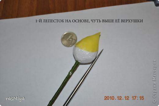 МК буду выкладывать частями (жаль загружается фото медленно), здесь покажу, как слепить сам цветок, в след. записях-чашелистики, листья, стебель, покраска. фото 5