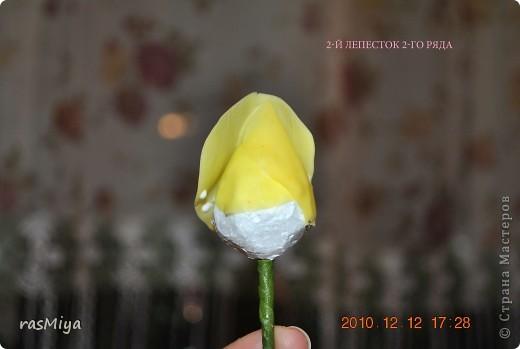 МК буду выкладывать частями (жаль загружается фото медленно), здесь покажу, как слепить сам цветок, в след. записях-чашелистики, листья, стебель, покраска. фото 9