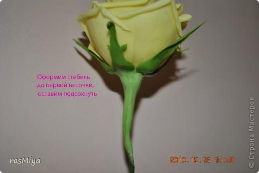 Мастер-класс Лепка МК по лепке розы Часть4-оформление стебля Фарфор холодный фото 7