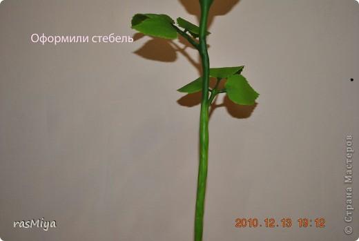 МК по лепке розы.Часть4-оформление стебля  фото 11