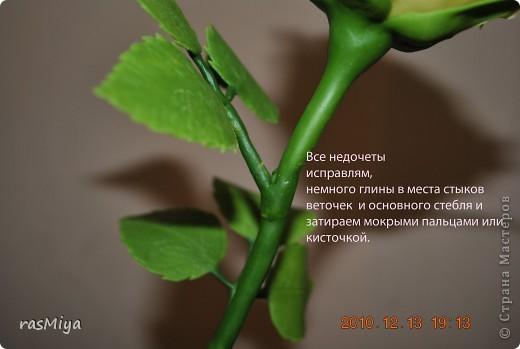 МК по лепке розы.Часть4-оформление стебля  фото 12