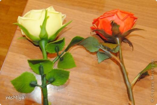 МК буду выкладывать частями (жаль загружается фото медленно), здесь покажу, как слепить сам цветок, в след. записях-чашелистики, листья, стебель, покраска. фото 1