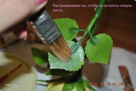 МК по лепке розы. Часть5-покраска. фото 3