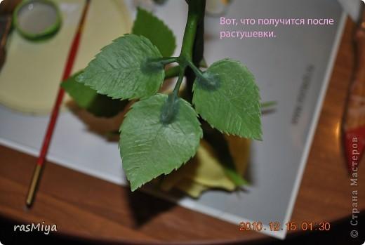 МК по лепке розы. Часть5-покраска. фото 4