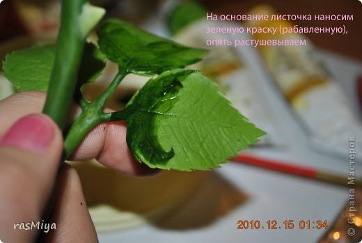МК по лепке розы. Часть5-покраска. фото 5