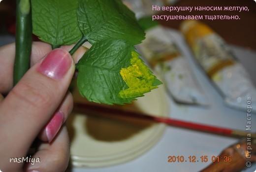 МК по лепке розы. Часть5-покраска. фото 6
