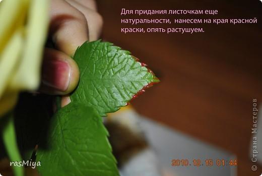 Мастер-класс Лепка МК по лепке розы Часть5-покраска Фарфор холодный фото 7