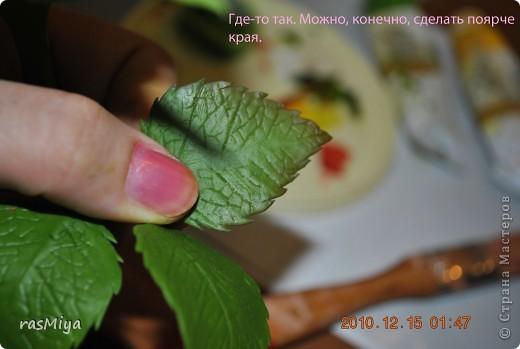 МК по лепке розы. Часть5-покраска. фото 8
