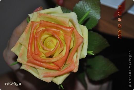 МК по лепке розы. Часть5-покраска. фото 10