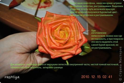 МК по лепке розы. Часть5-покраска. фото 12