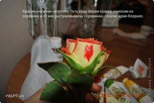 МК по лепке розы. Часть5-покраска. фото 13