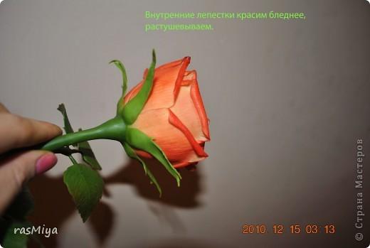 МК по лепке розы. Часть5-покраска. фото 15