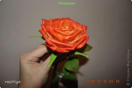 МК по лепке розы. Часть5-покраска. фото 16