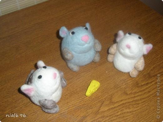 Мышь фото 3