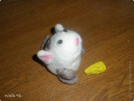 Мышь фото 1