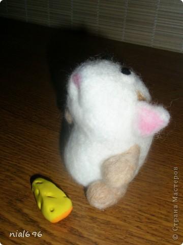Мышь фото 2