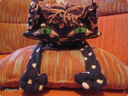 Кошечка в горошек фото 2