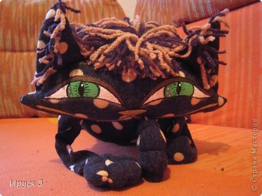 Кошечка в горошек фото 3
