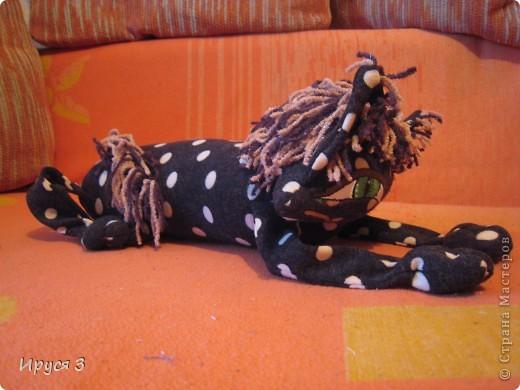 Кошечка в горошек фото 5