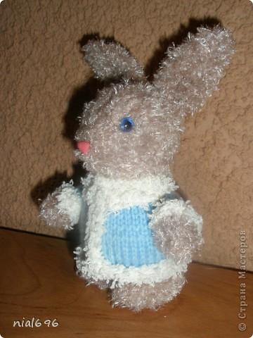 Зайчишки фото 2