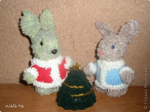 Зайчишки фото 3