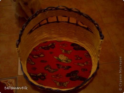 Теперь и моя кошка со своей кроваткой. фото 1