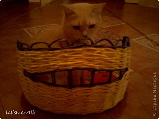 Теперь и моя кошка со своей кроваткой. фото 3