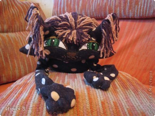 Ещё одна кошка в горошек фото 2