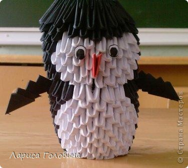 Давлетшин Рушан со своим попугаем. фото 4