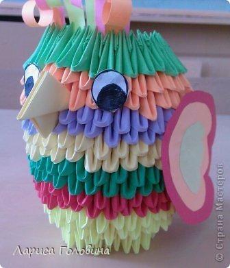 Давлетшин Рушан со своим попугаем. фото 2