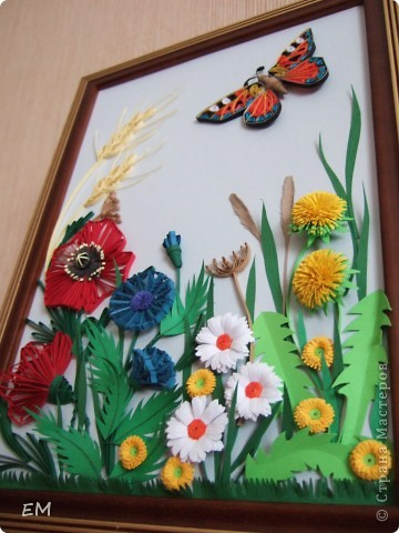 Бабочка на полянке.  фото 2