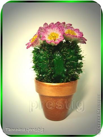 Схемы бисероплетения кактус