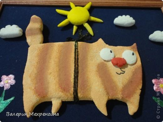 Солнечный котик ) фото 2
