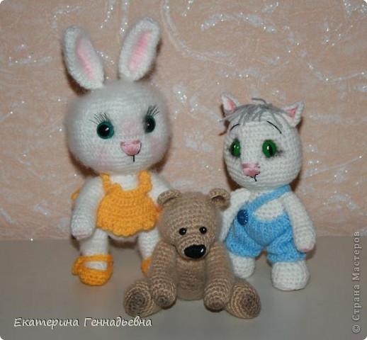 Кота или кролика? фото 3