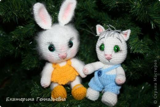 Кота или кролика? фото 1
