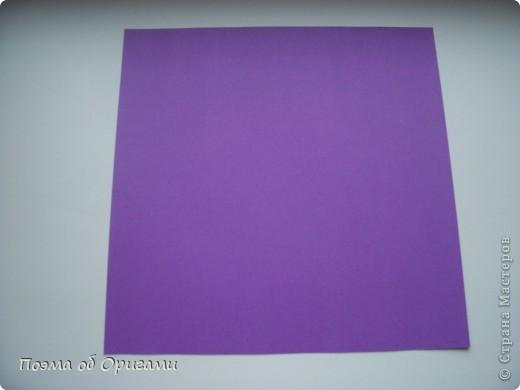 Базовая форма Двойной квадрат(Square base) фото 2