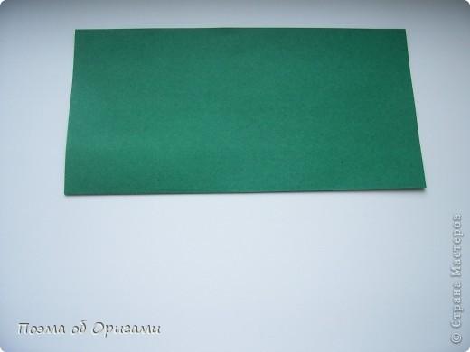 Базовая форма названа по классической и давно известной фигурки лягушки, которая складывается на этой основе. фото 3