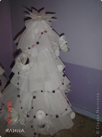 Елочки - красавицы. фото 2