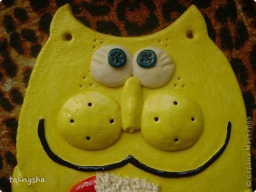 Котик лимонного цвета фото 3